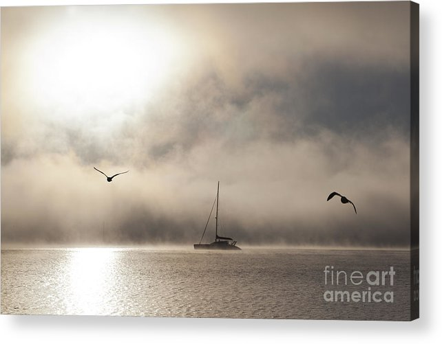 Yacht Acrylic Print featuring the photograph Yacht with gulls in mist by Sheila Smart Fine Art Photography
