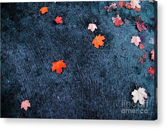 Autumn Acrylic Print featuring the photograph About autumn by Vadim Grabbe