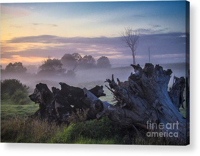 Morning Acrylic Print featuring the photograph Morning mist by Sheila Smart Fine Art Photography