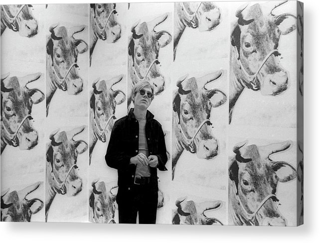 Artist Acrylic Print featuring the photograph Andy Warhol and Cows by Fred W. McDarrah