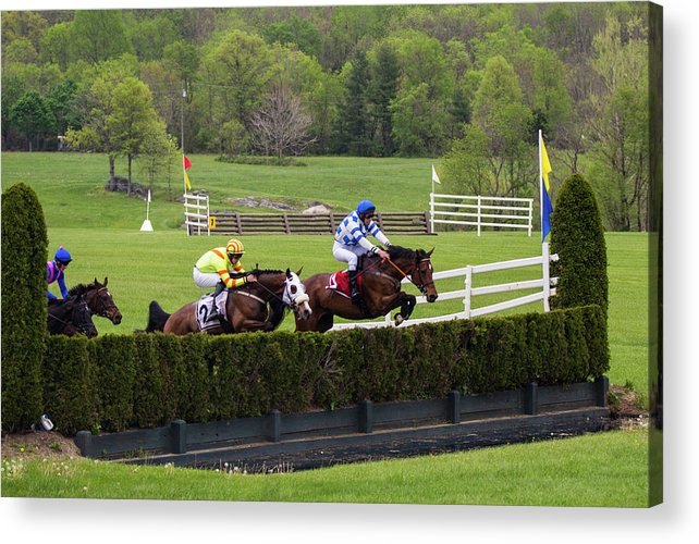 Steeplechase Acrylic Print featuring the photograph Virginia Gold Cup by Fred DeSousa