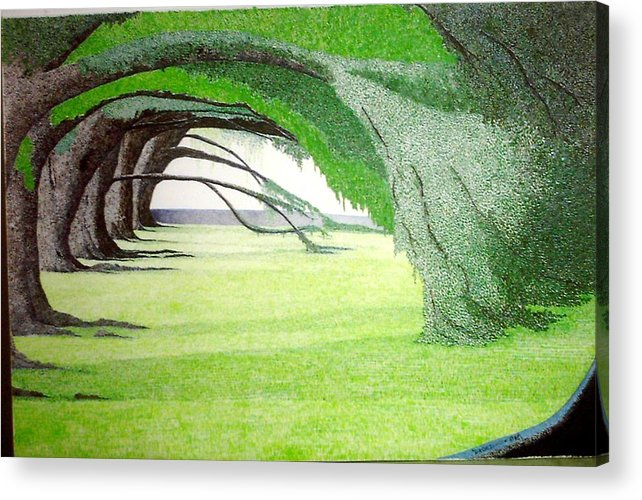 Group Bonsai Acrylic Print featuring the painting Grove Illusion by A Robert Malcom