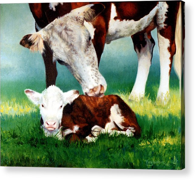 Cow Acrylic Print featuring the painting First Bath by Valerie Aune