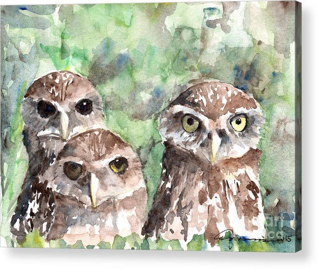 Burrowing Owls by Claudia Hafner