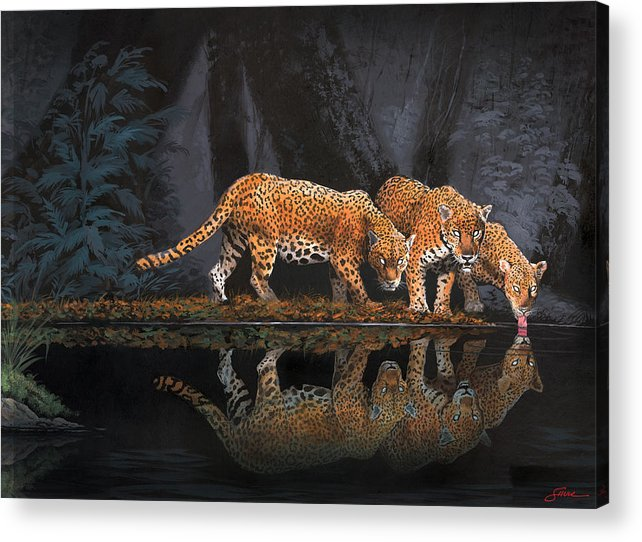#leopards Acrylic Print featuring the painting A Cool Drink by Harold Shull