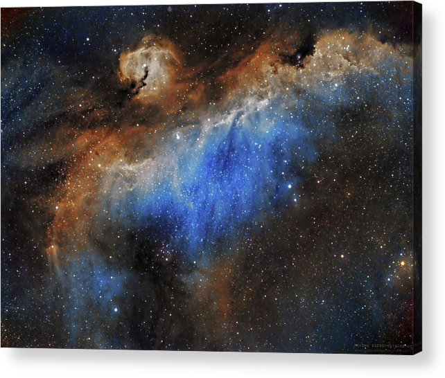 Astronomy Acrylic Print featuring the photograph The Seagull Nebula by Prabhu Astrophotography