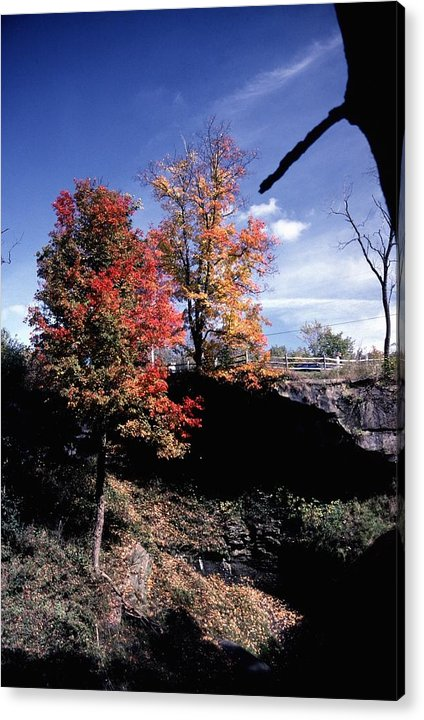 Autumn Color Acrylic Print featuring the photograph 10602-1 by Mike Davis