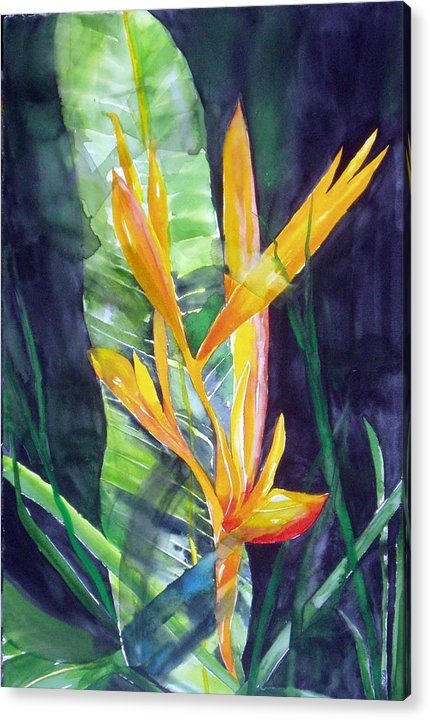 Tropical Plant Acrylic Print featuring the painting Golden Torch by Maritza Bermudez