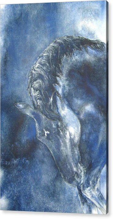 Horse Acrylic Print featuring the painting Blues by Barbara Widmann