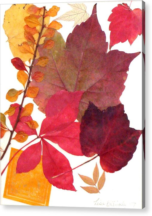 Fall Acrylic Print featuring the mixed media My Colors by Lisabeth Billingsley
