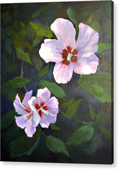 Floral Acrylic Print featuring the painting Rose of Sharon by Jimmie Trotter