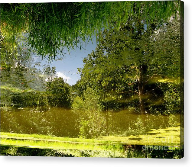 Holmesbrook Acrylic Print featuring the photograph Upside Down And Backwards by Trish Hale
