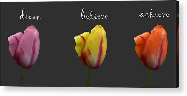 Dream Acrylic Print featuring the photograph Dream Believe Achieve by Patricia Ridlon