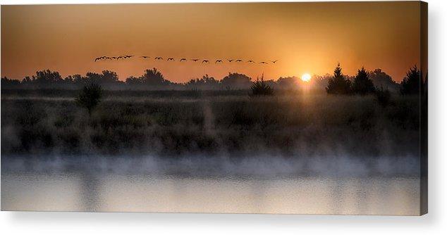 Sunset Art Prints Acrylic Print featuring the photograph Geese At Sunrise by Garett Gabriel