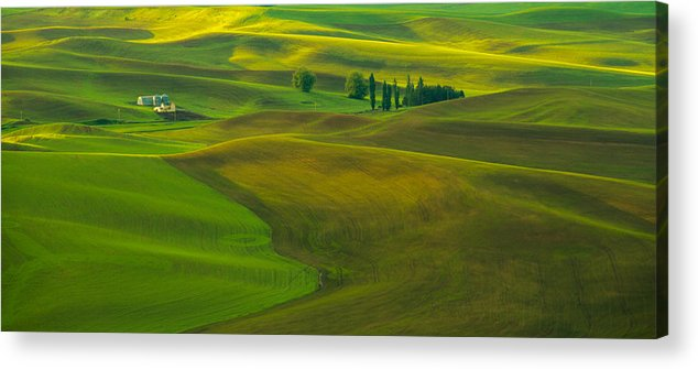 Spring Sunrise Acrylic Print featuring the photograph Spring Rays by Kunal Mehra