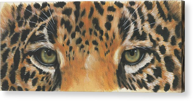 Jaguar Acrylic Print featuring the painting Eye-catching Jaguar by Barbara Keith