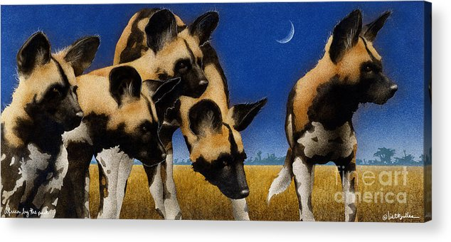Will Bullas Acrylic Print featuring the painting Africa By The Pack... by Will Bullas