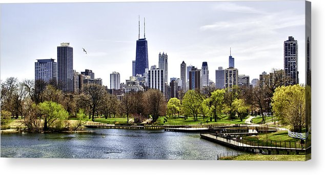 Chicago Photographs Acrylic Print featuring the photograph The Chicago Skyline Day-001 by David Allen Pierson