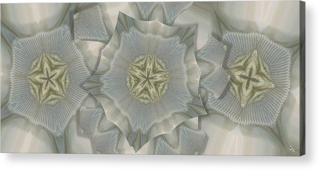 Collage Acrylic Print featuring the photograph Jacket Flowers by Ron Bissett