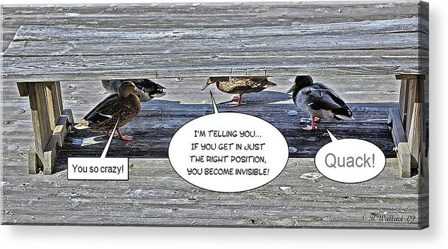 2d Acrylic Print featuring the photograph Quack by Brian Wallace