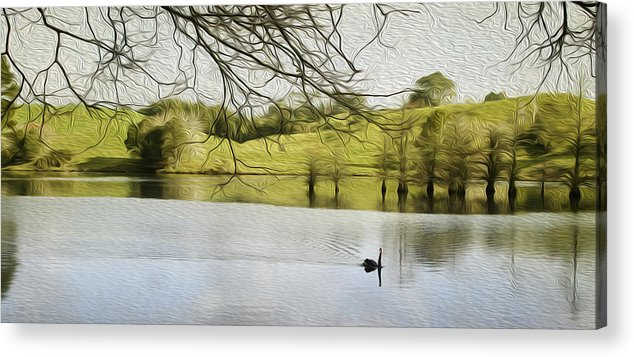 Swan Acrylic Print featuring the digital art Swan Lake by Les Cunliffe