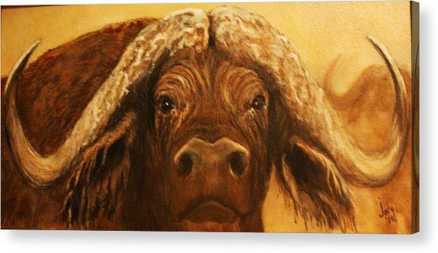 Buffalo Acrylic Print featuring the painting Cape Buffalo by Jody Domingue