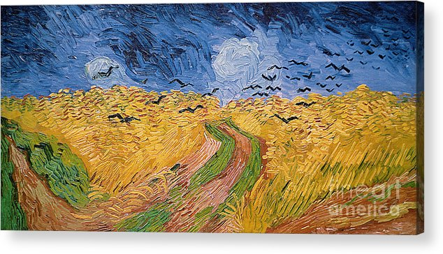 Landscape;post-impressionist; Summer; Wheat; Field; Birds; Threatening; Sky; Cloud; Post-impressionism Acrylic Print featuring the painting Wheatfield With Crows by Vincent van Gogh