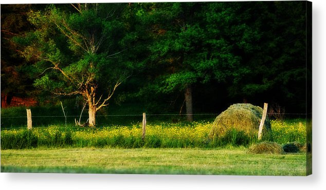 Haybale Acrylic Print featuring the photograph Late Summer's Eve by Mary Frances