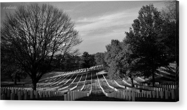 Cemetery Acrylic Print featuring the photograph They Gave All by Chris Berry