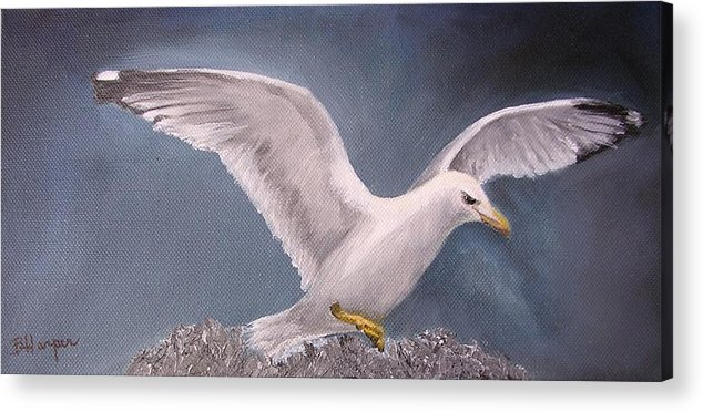 Seagull Acrylic Print featuring the painting Herring Gull by Barbara Harper