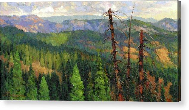 Wilderness Acrylic Print featuring the painting Ladycamp by Steve Henderson