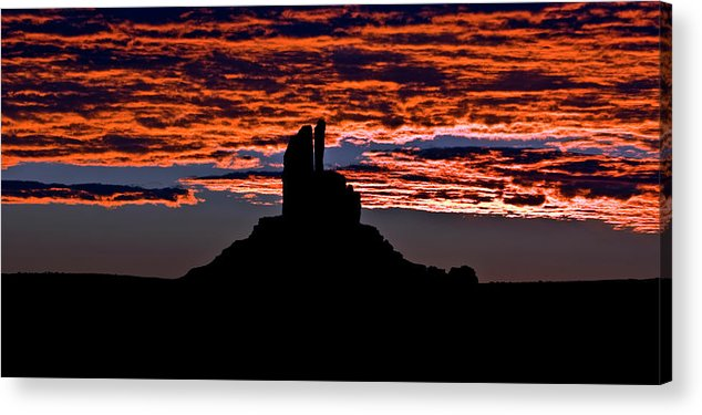 Morning Acrylic Print featuring the photograph Morning Silhouette by Murray Bloom