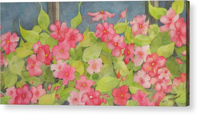 Flowers Acrylic Print featuring the painting Perky by Mary Ellen Mueller Legault