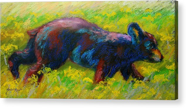 Western Acrylic Print featuring the painting Running Free - Black Bear Cub by Marion Rose