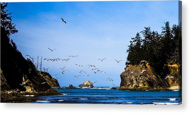 Acrylic Print featuring the photograph Sunset Bay Beach by Angus Hooper Iii