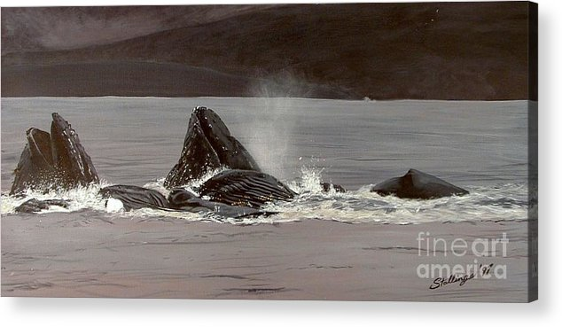 Whale Acrylic Print featuring the painting Whales Feeding by Shawn Stallings