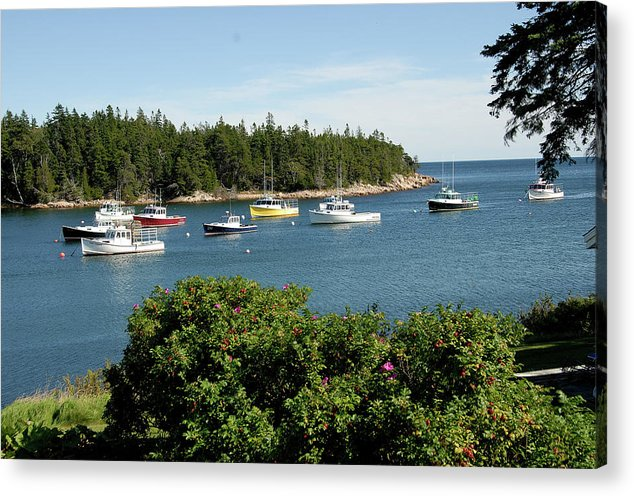 Lobster Boats Acrylic Print featuring the photograph Maine Cove by David Campione