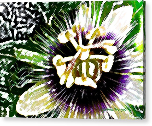 Passion Fruit Flower Acrylic Print featuring the digital art Passion Flower by James Temple