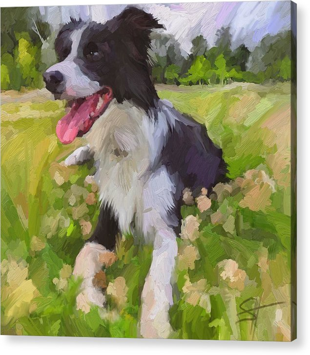 Border Collie Acrylic Print featuring the digital art Collie Flowers by Scott Waters