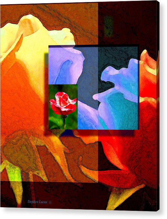 Modern Acrylic Print featuring the digital art Backlit Roses by Stephen Lucas