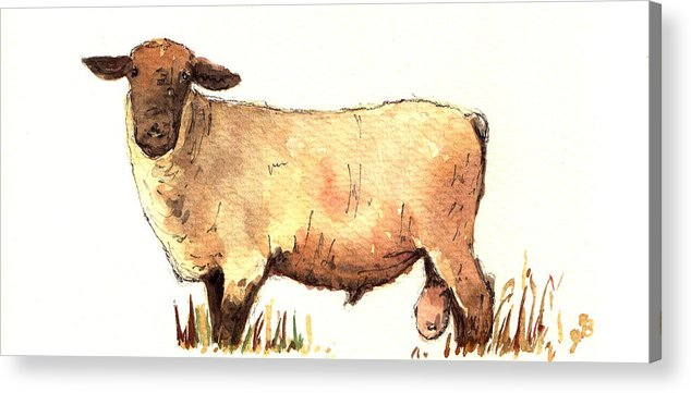 Male Acrylic Print featuring the painting Male sheep black by Juan Bosco