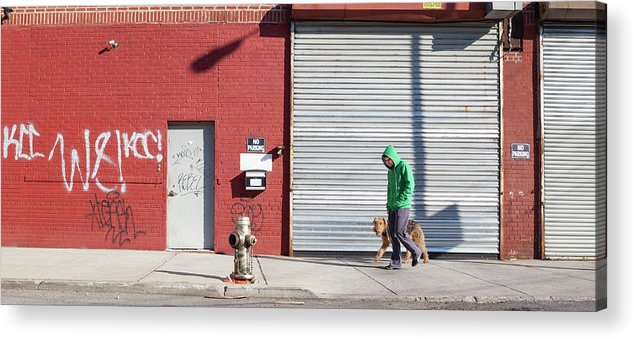 Pets Acrylic Print featuring the photograph Young Man Walks Dog by Alex Potemkin