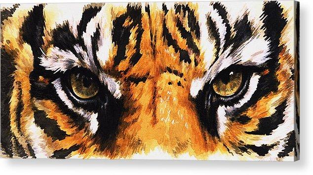 Feline Acrylic Print featuring the mixed media Sumatran Tiger Glare by Barbara Keith