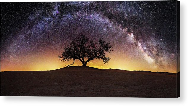 Milky Way Acrylic Print featuring the photograph Tree of Wisdom by Aaron J Groen