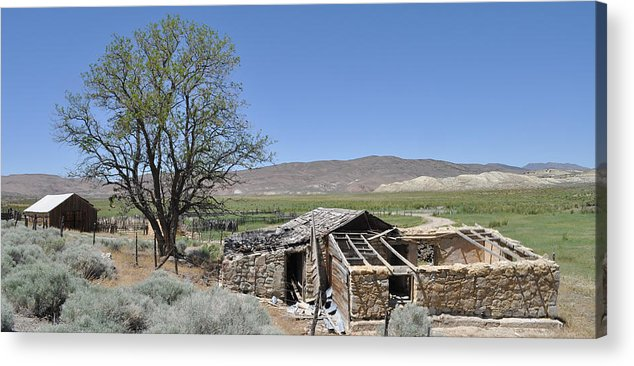 Abandoned Acrylic Print featuring the photograph Nevada Homestead by Everett Bowers
