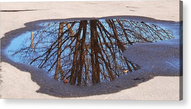 Reflection Acrylic Print featuring the photograph Reflection by Lisa Kane