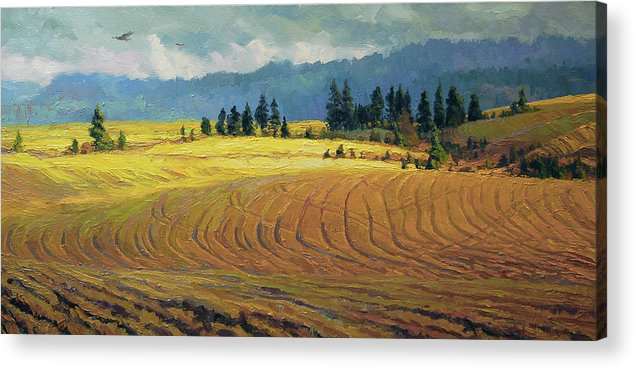 Country Acrylic Print featuring the painting Pine Grove by Steve Henderson