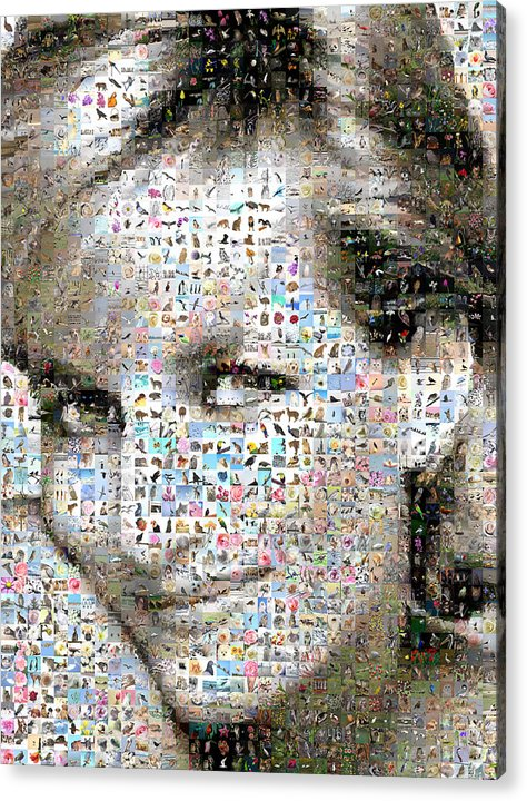 Mosaic Acrylic Print featuring the digital art Lady D by Gilberto Viciedo
