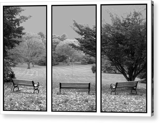 Nature Acrylic Print featuring the digital art Bench View Triptic by Tom Romeo