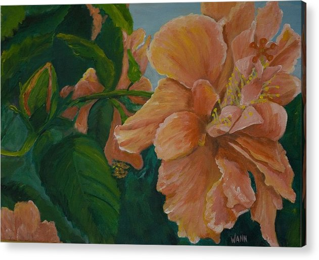 Flower Acrylic Print featuring the painting Double Hibiscus by Anita Wann